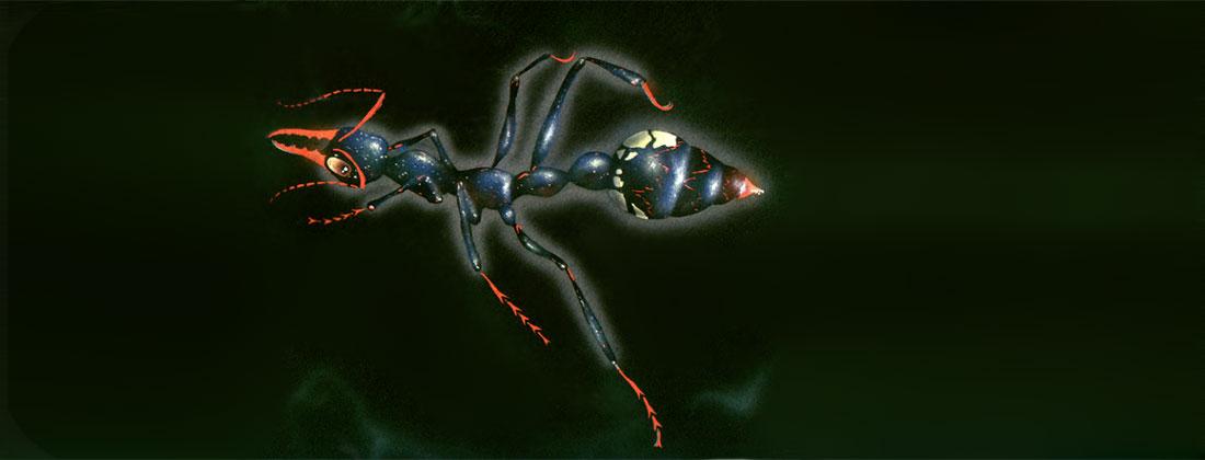 Ant fabric stencil art design