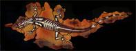 Lizard Fabric stencil design