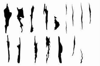 Tree markings templates