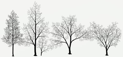 Tree Mural Designs Part 42