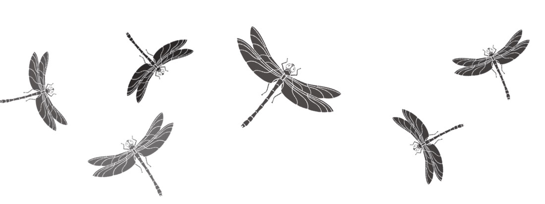 Dragonfly stencils theme pack