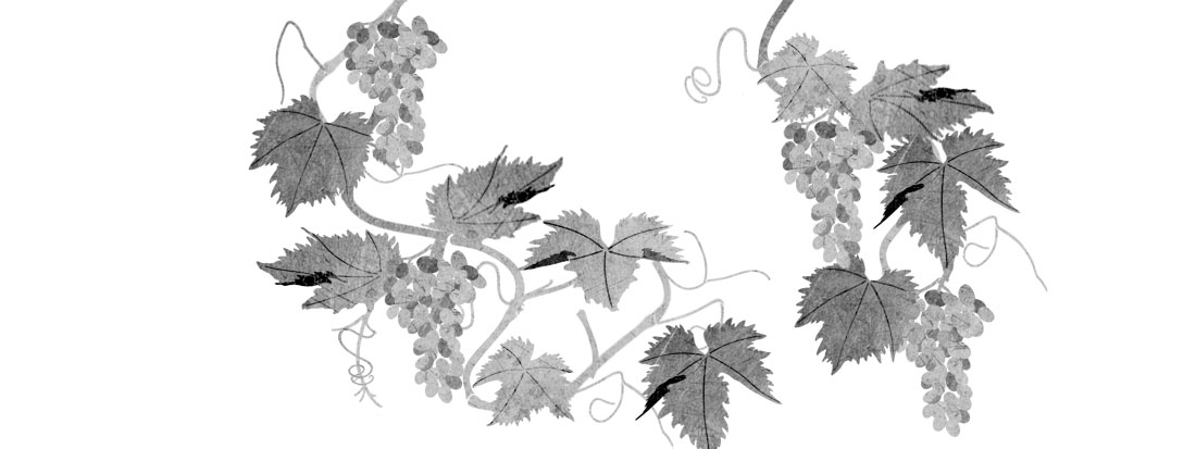Grape and grapevine stencils for walls
