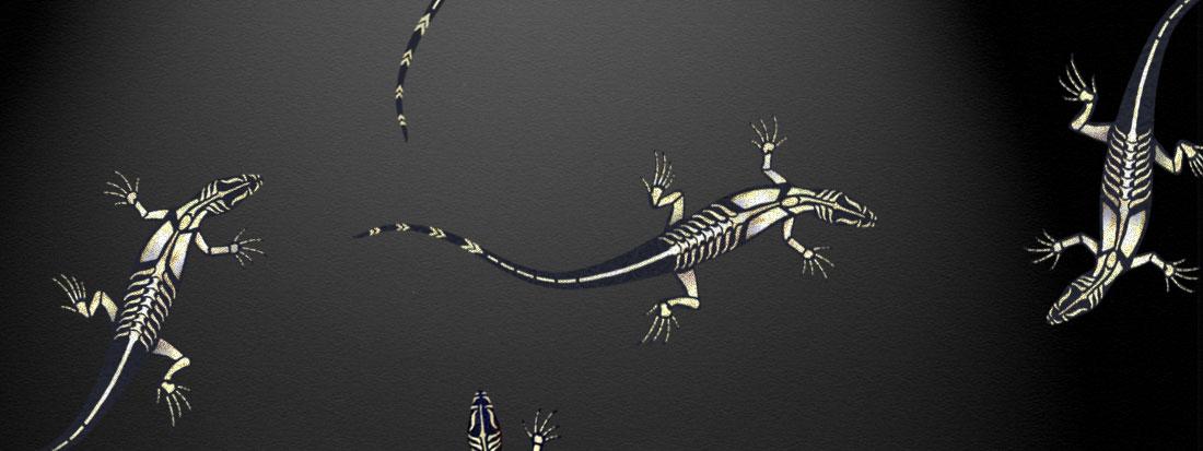 Lizard stencil mural