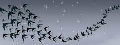 Flying bird Stencils with stars