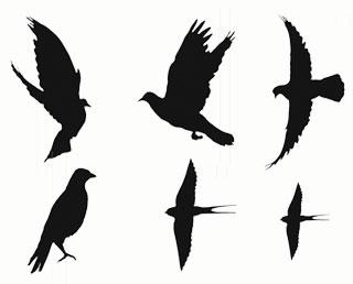 Pidgeon templates